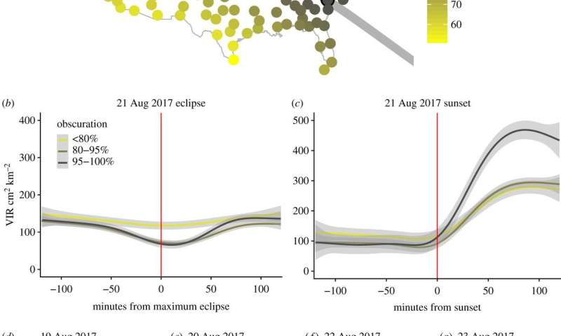 **How birds and insects reacted to the solar eclipse