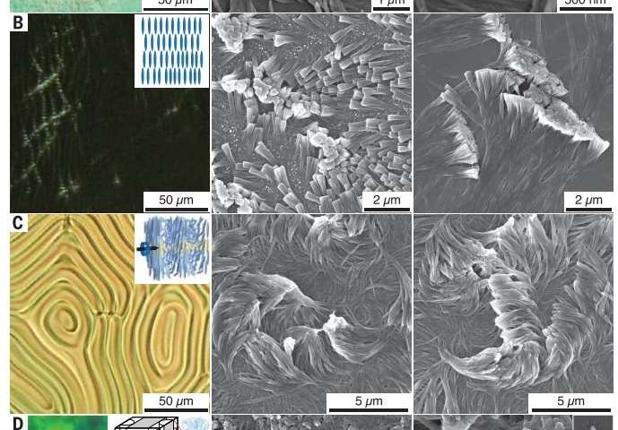 Nanofiber carpet could lead to new sticky or insulating surfaces