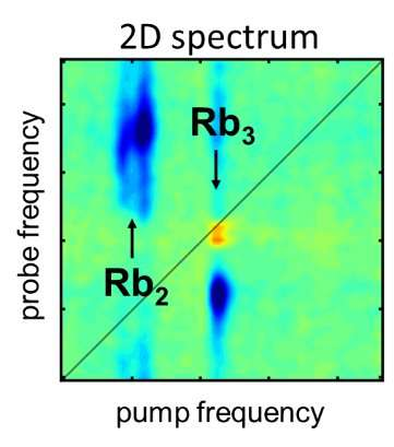 **Researchers apply 2-D spectroscopy to isolated molecular systems for the first time