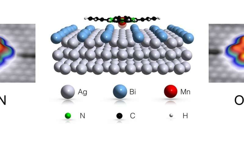 Environment turns molecule into a switch