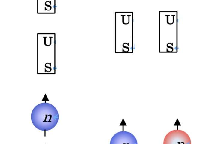 Proton scattering reveals the secrets of strongly-correlated proton-neutron pairs in atomic nuclei