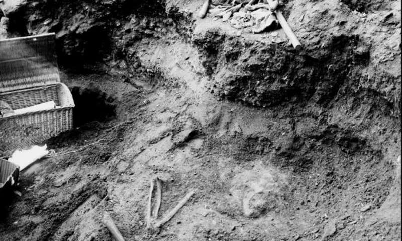 Neanderthals cared for each other and survived into old age – new research