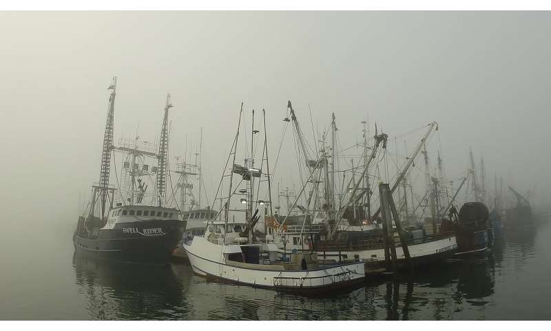 New study reveals cost of 2017 salmon fisheries closure