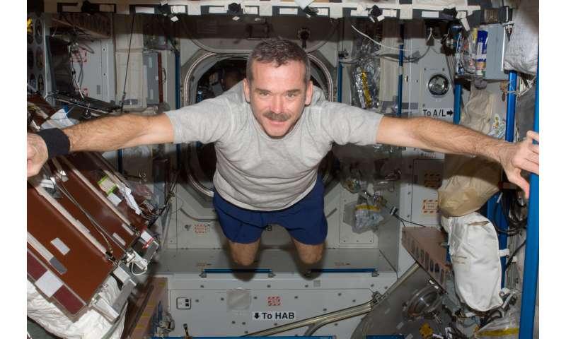 What happens to the brain in zero gravity?