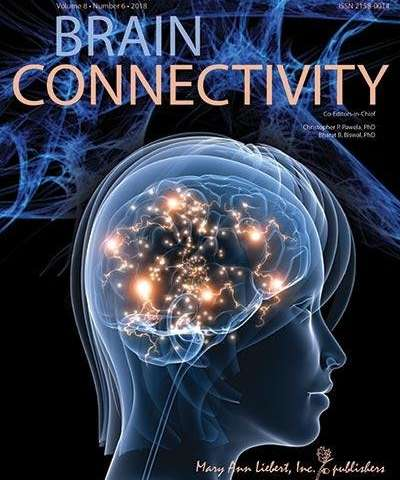 Researchers find disrupted functional connectivity in cerebellum of adults with HF-ASD