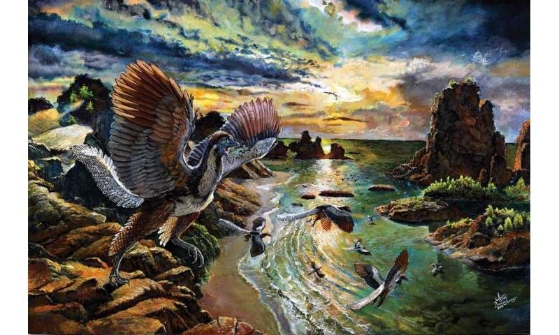 New species of the 'first bird' Archaeopteryx uncovered