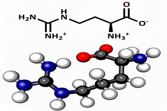 Researchers find that the amino acid arginine may have played a more important role in the chemical origins of life