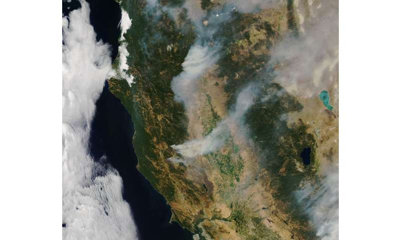 Climate change and wildfires – how do we know if there is a link?