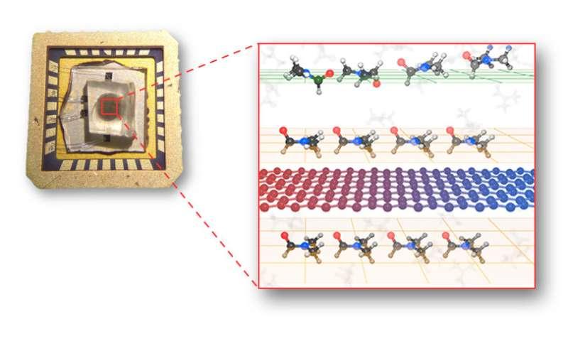 Revealing the mechanisms behind the enhancement of thermal properties of graphene nanofluids