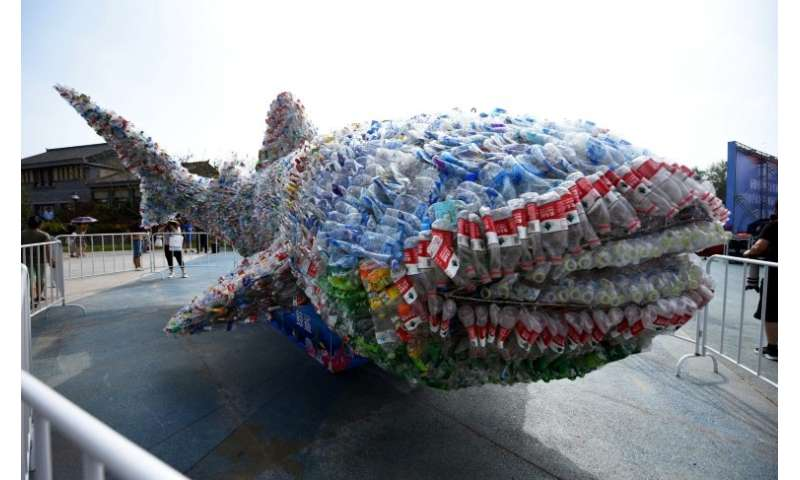 Social media stories of plastic pollution have increased awareness, and prompted action such as an installation depicting a shar