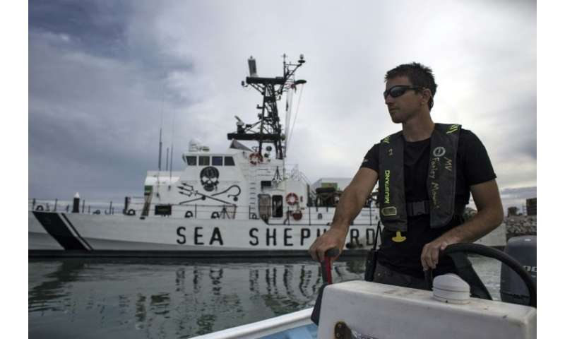 Activists from the US environmental group Sea Shepherd patrol the waters off San Felipe, in the Gulf of California, day and nigh