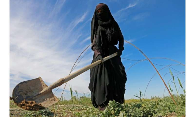 A female Iraqi farmer digs with a shovel in a field in Diwaniyah, around 160 kilometres (100 miles) south of the capital Baghdad