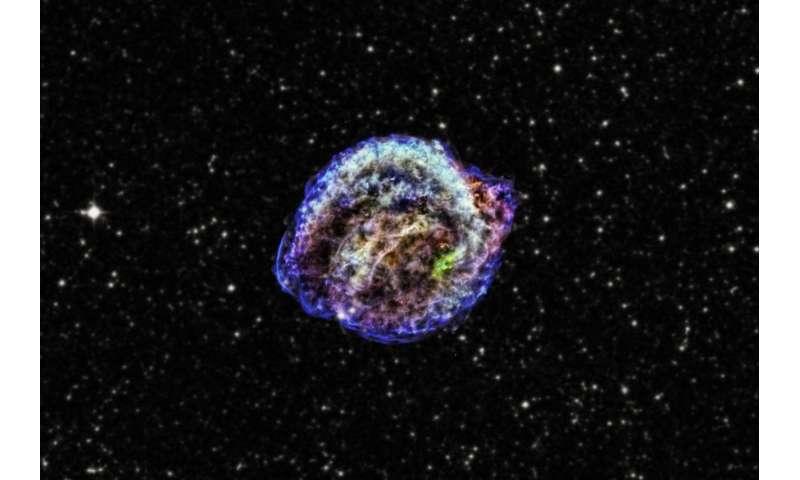After the Kepler supernova explosion, no survivors were left behind Afterthekepl