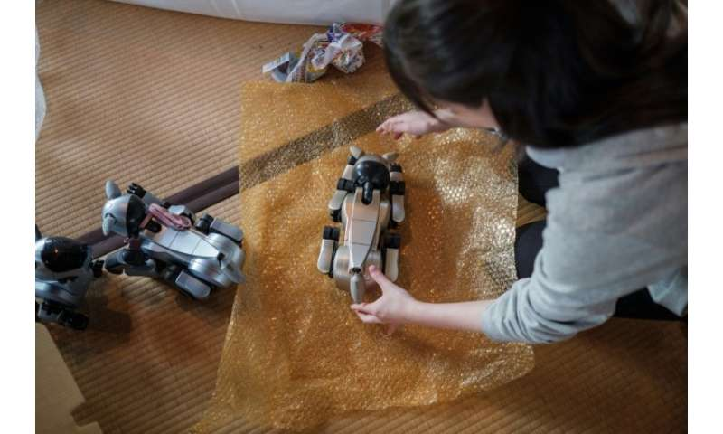 A girl wraps a pet robot AIBO after the robots' 'funeral'. The AIBO was the world's first home-use entertainment robot capable o