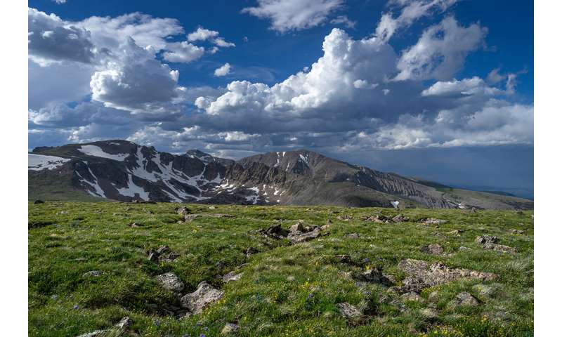 Alpine ecosystems struggle to recover from nitrogen deposition