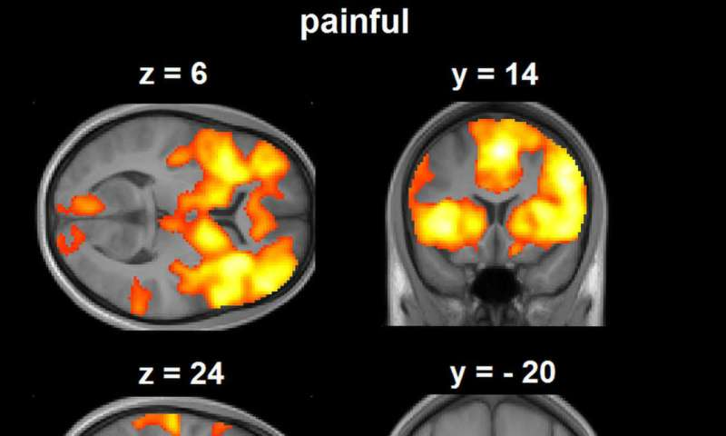 Altered pain processing after opioid discontinuation