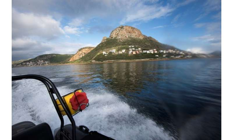 A Marine Law Enforcement officer working for the city of Cape Town patrols False Bay, near Simon's Town, looking for poachers of