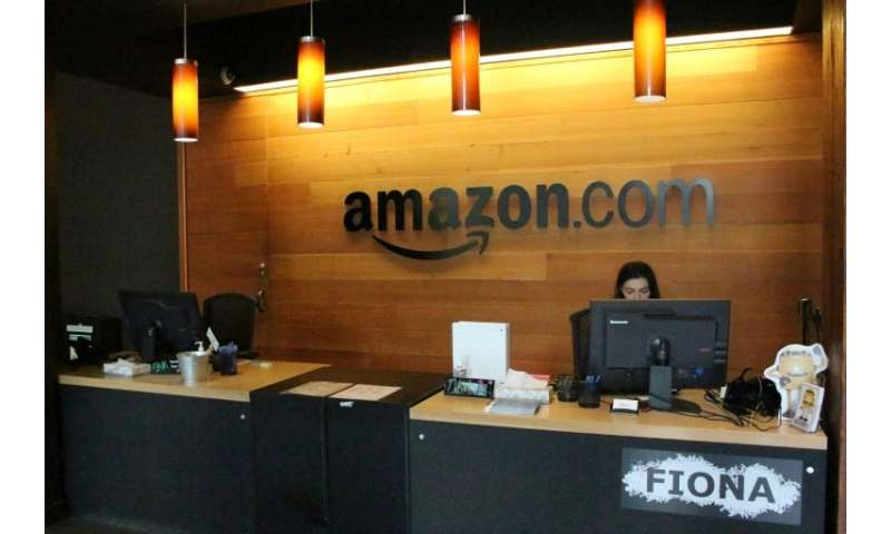 Amazon delivered a hefty profit in the past quarter, fueled by growth in cloud computing as well as online commerce