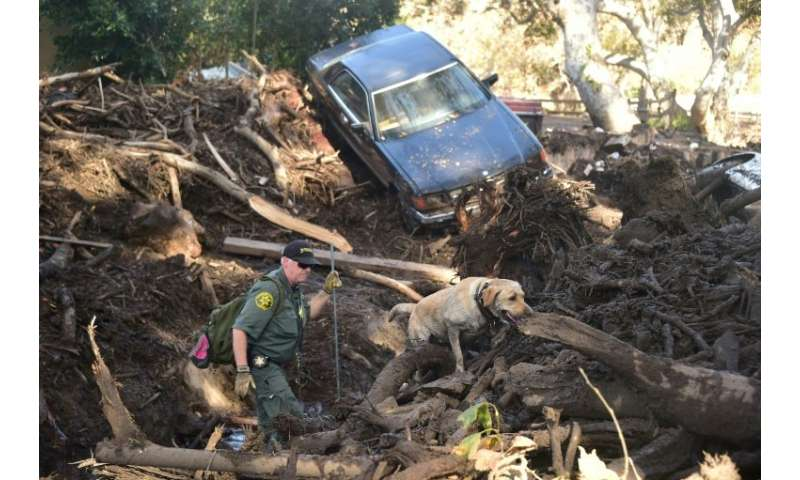 A member of a search and rescue team and his dog look for victims in Montecito, California, which was hit by mudslides that left