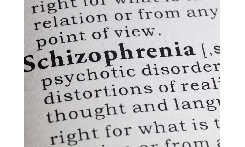 Analysis Finds Schizophrenics Have Thinner Cerebral Cortex On Average