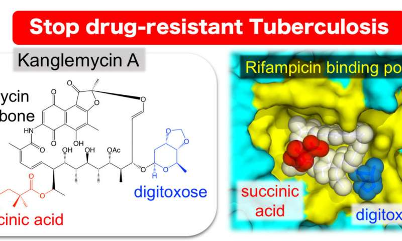 A naturally occurring antibiotic active against drug-resistant tuberculosis