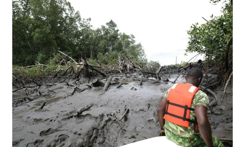 A ranger sits on a boat where mangroves once flourished, before cleared away for the rapid expansion of Gabon's capital Librevil