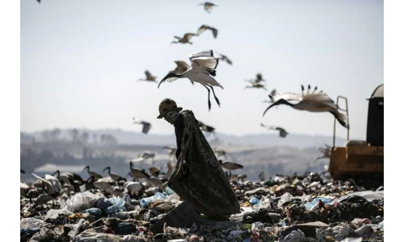 A reclaimer wades through the waste at Robinson Deep landfill, Johannesburg's largest landfill on June 29, 2018.