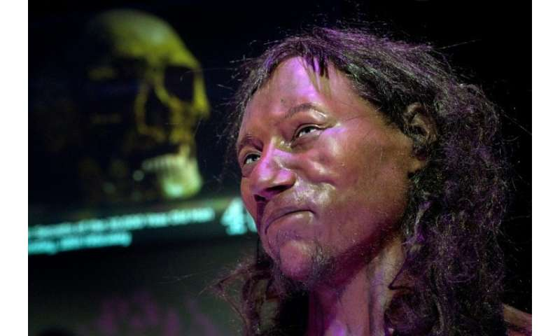 A reconstruction model from the skull of 'Cheddar Man' after DNA analysis of the 10,000-year-old skeleton shows early Britons ha
