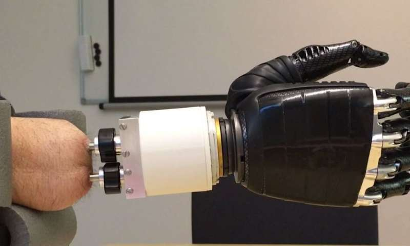 Artificial joint restores wrist-like movements to forearm amputees