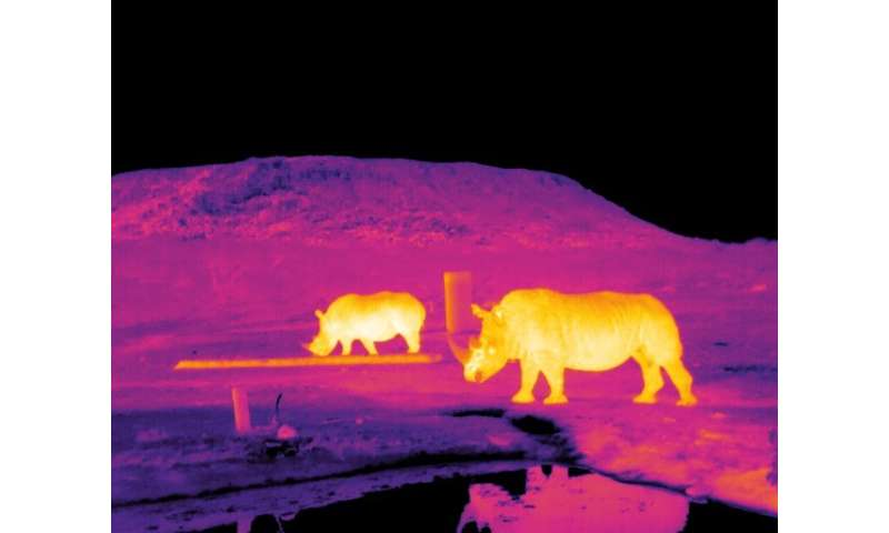 Astro-ecology: Saving endangered animals with software for the stars
