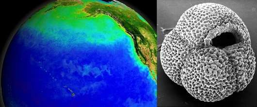 A Shift in Ocean Circulation That Helped End the Ice Age
