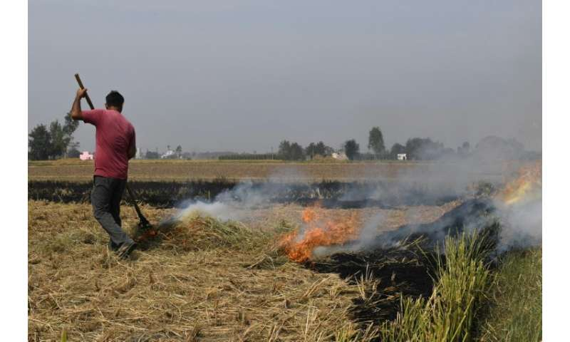 Authorities in the state of Haryana claim there has been a reduction in  the number of fires this year, but farmers represent po