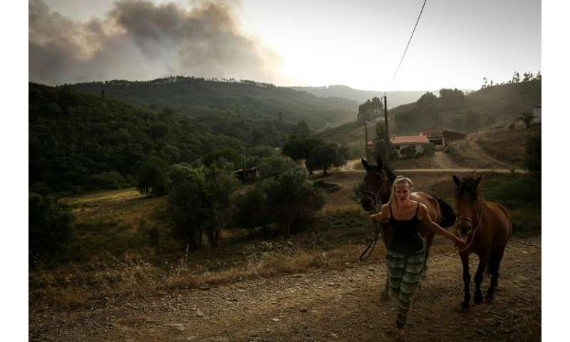 A woman pulls two horses as smoke columns rise from a wildfire raging in Alvega, Portugal