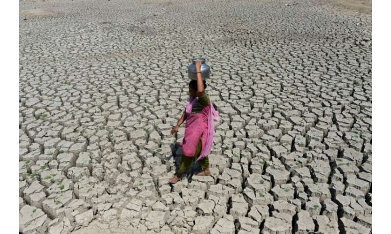 A woman searching for water walks on the parched bed of Chandola Lake, near the Indian city of Ahmedabad. A severe drought struc