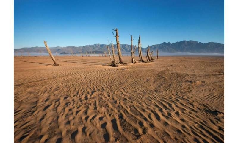 Bare sand and dried tree trunks stand out at Theewaterskloof Dam, which is now only 12.5 percent full