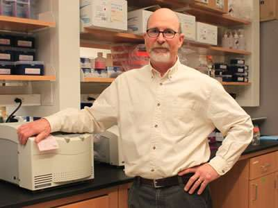 Biologists discover link between protein in brain, seizure suppression