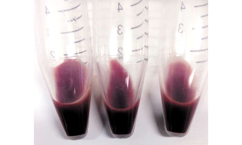 Blood factories closer to reality