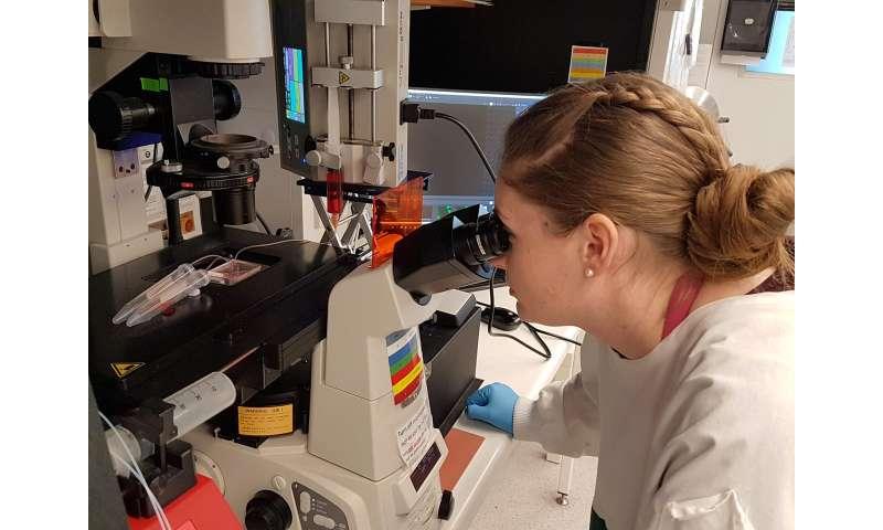 Blood sample breakthrough good news for pregnant women