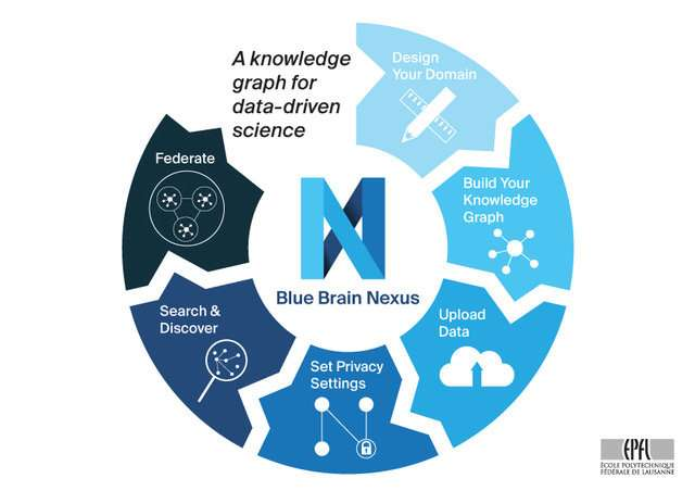 Blue Brain Nexus: An open-source knowledge graph for data-driven science
