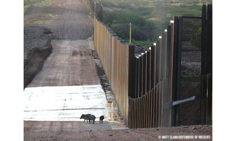 Border wall threatens biodiversity