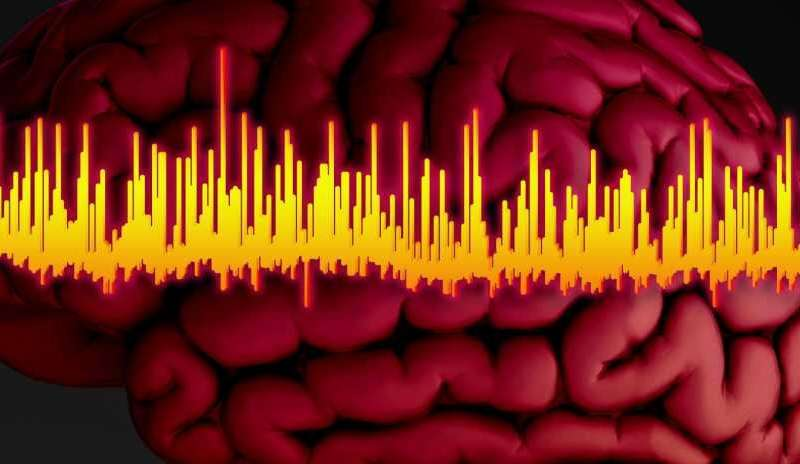 Brain signals for drug screening