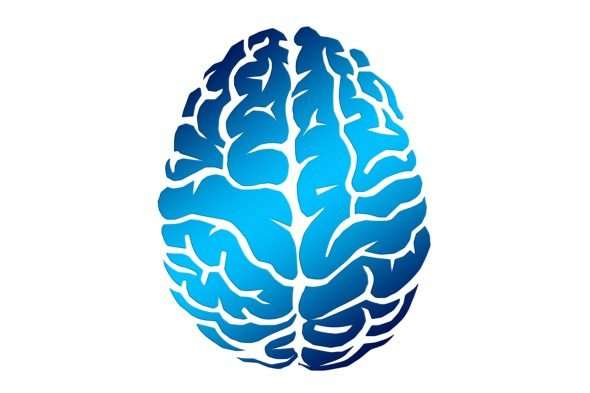 Brain stimulation helps younger, not older, adults' memory