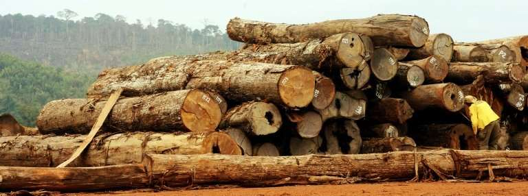 Brazil said the rate of deforestation in the Amazon fell by 16% between August 2016 and July 2017, compared to the same period 1