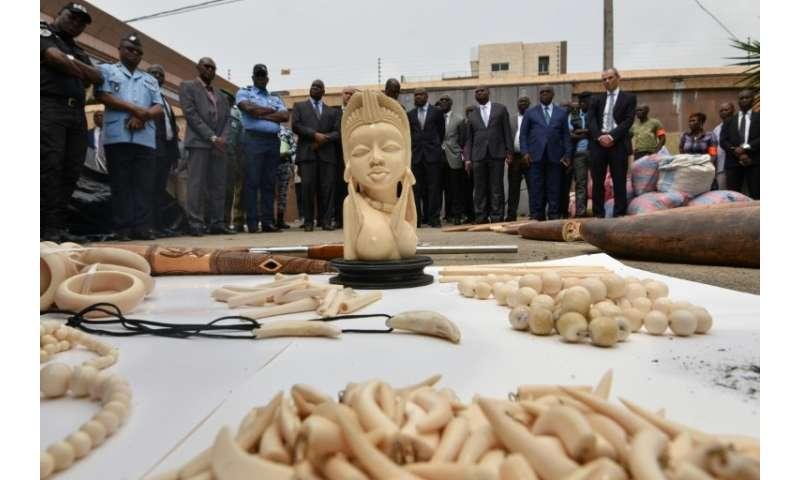 b072c88b574c Britain to ban ivory sales
