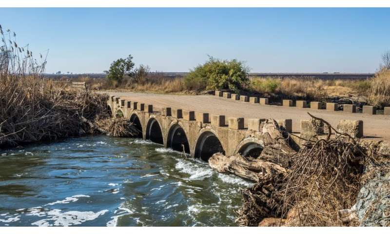 Cancer-causing toxicants found in a tributary of South Africa's second largest river