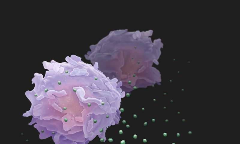 Cancer cells send out 'drones' to battle immune system from afar