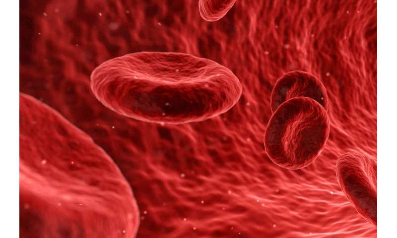 Challenging our understanding of how platelets are made