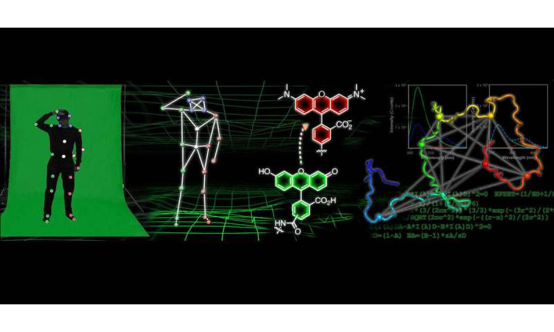 Chemists develop motion capture-like technology for tracking protein shape         in many modern animated movies,