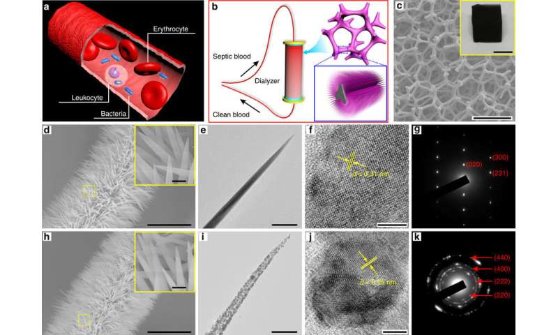 Claw-like nanowires filter bacteria from blood