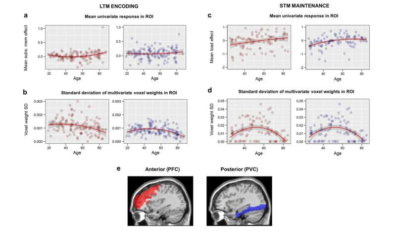 Cognitive consequences of age-related increase in brain activity
